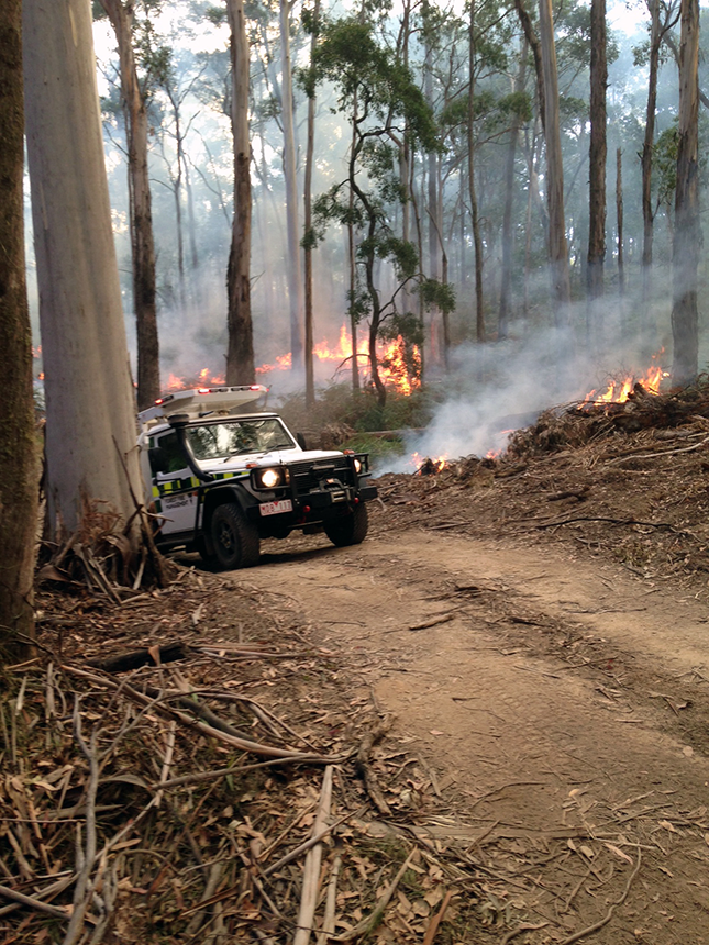 Parks Victoria vehicle near Wombat Forest prescribed burn
