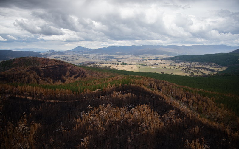 This aerial photograph shows the environmental damage from the Pierces Creek fire, which burned through Canberra's west. Image: Marta Yebra